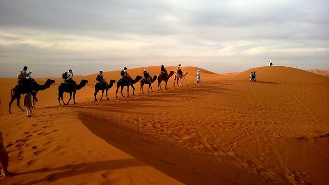 Interesting Facts About The Desert - A hot desert