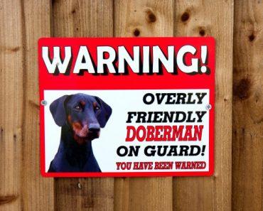 warning-sign-dog-on-guard